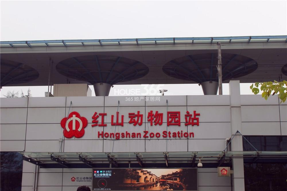 复地新都国际靠近红山动物园地铁站(11.24)