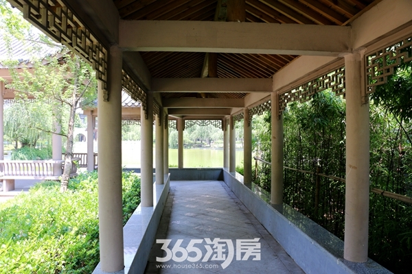三潭音悦一期实景图(2016.7月摄)
