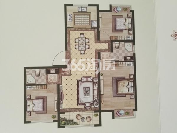 小高层1层116平E户型三室两厅两卫