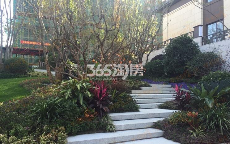 银亿东城景观实景图(12.21)