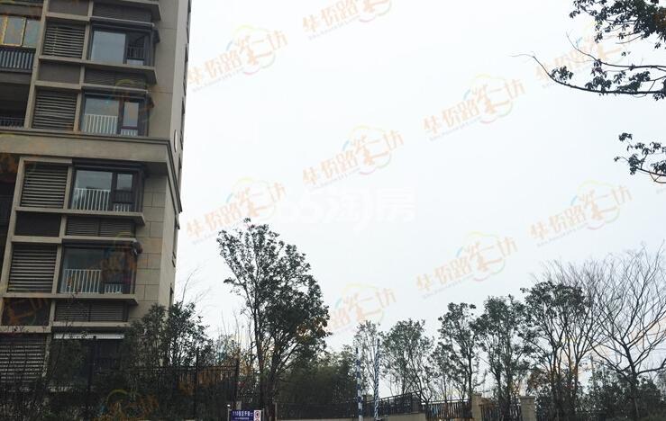 银亿东城11街区实景图(2.25)