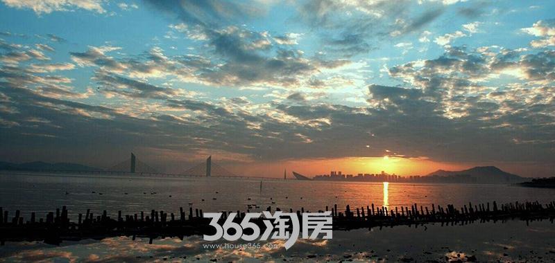 滨湖双玺周边配套公园实景图(8.22)