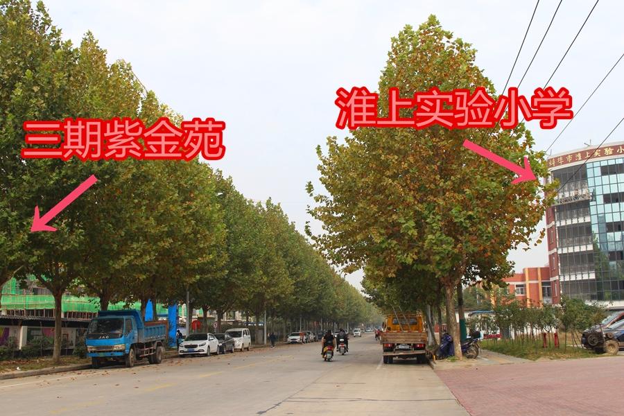 丽景天成 周边小学 201804